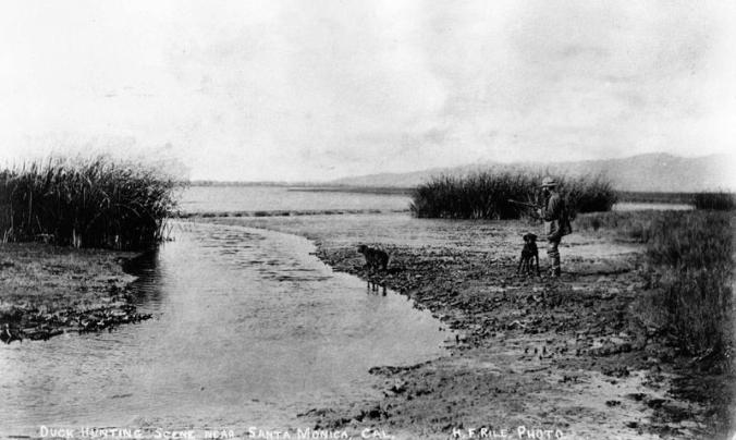Duck_Hunting_Play_Vista_1890